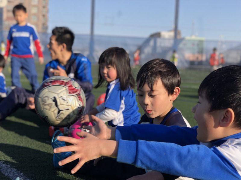 日本と海外のスポーツ指導の違い